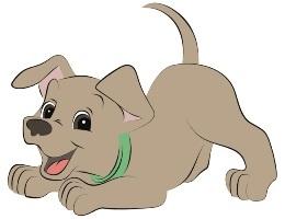 Все для собак: корма, витамины, аксессуары и много всякого разного для полноценного ухода за Вашим питомцем.