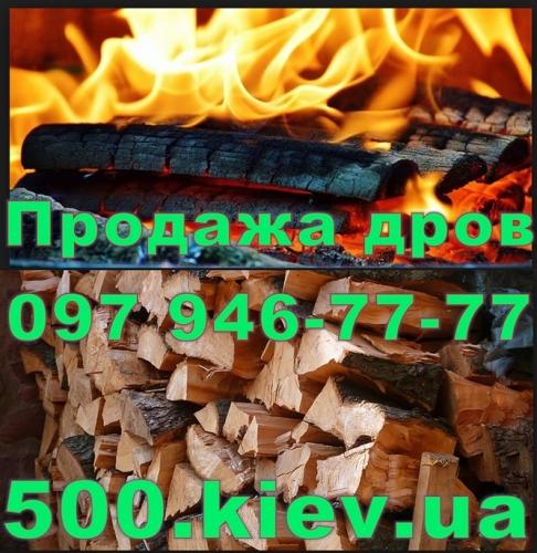 Любую древесину мы продаем в форме колотых дров, колод и бревен.